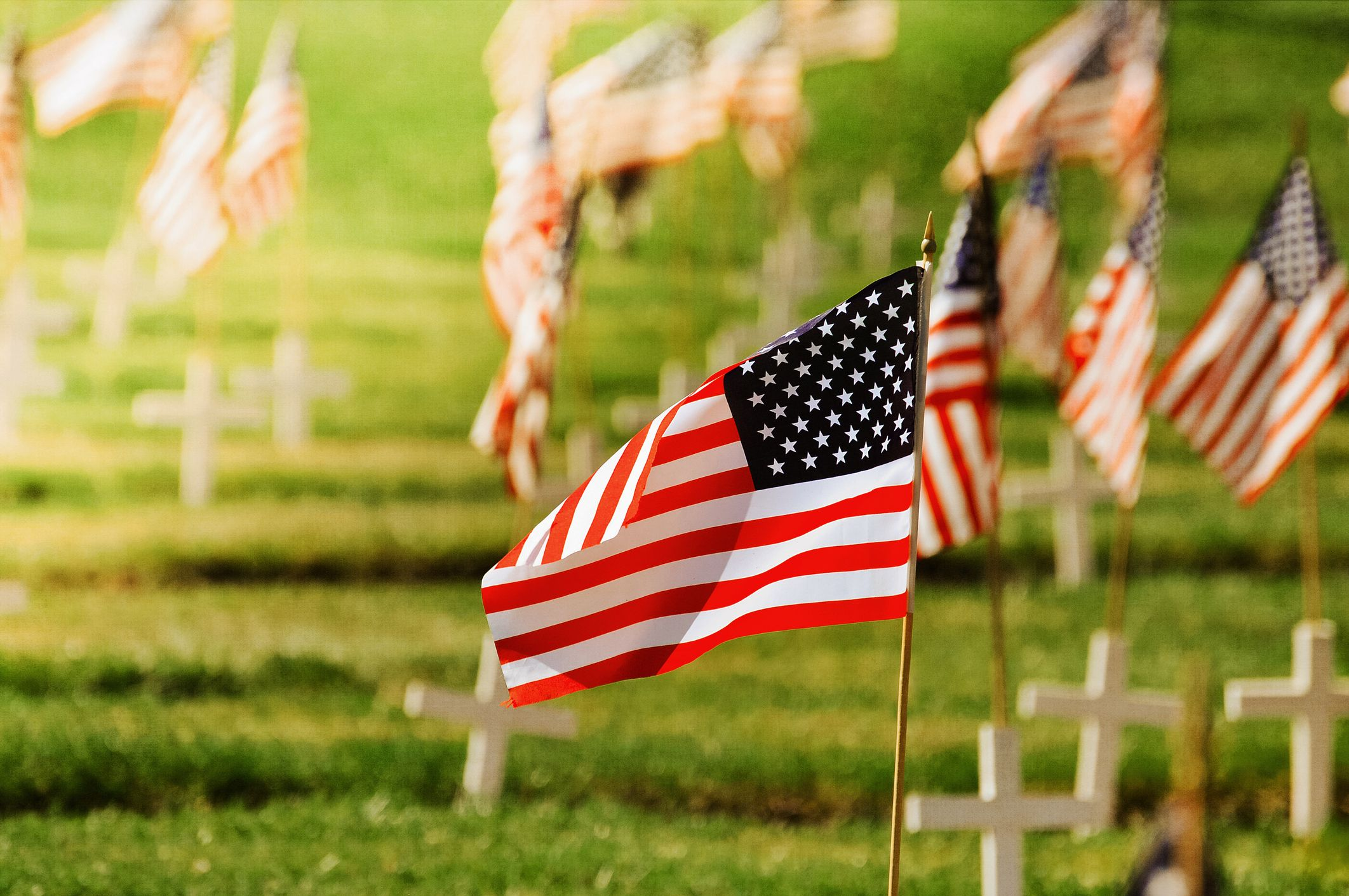 Memorial Day 2020 B (Flags in cemetery) (JPG)
