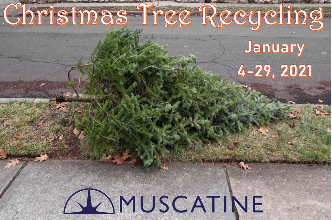 2021 Christmas Tree Recycling (JPG)