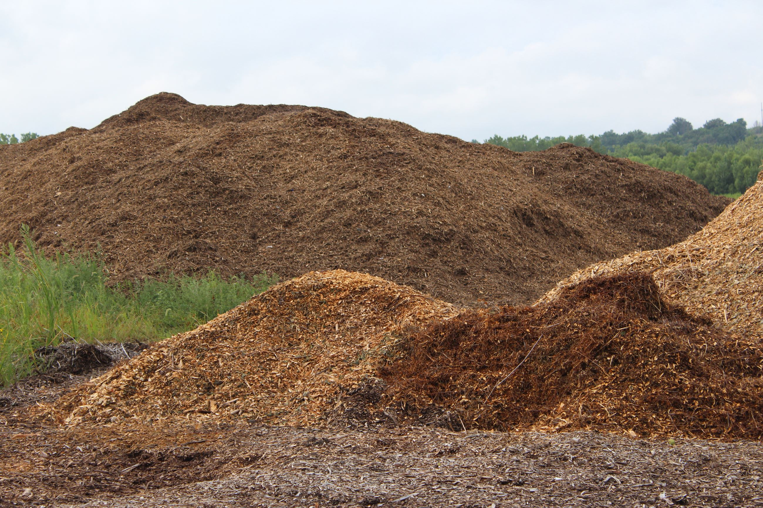 Free Mulch at Muscatine Compost Site 081219 (JPG)