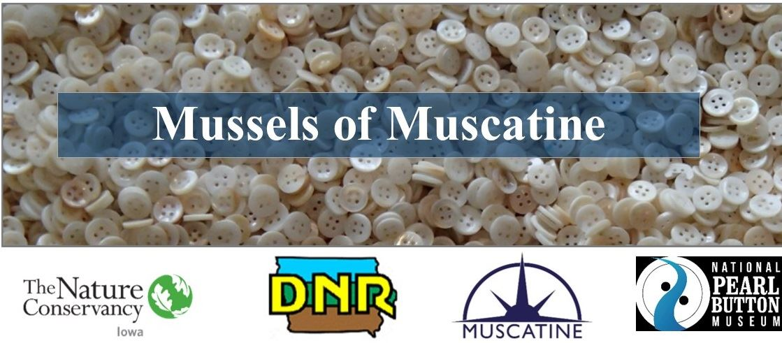 Mussels of Muscatine Header 2 (JPG)